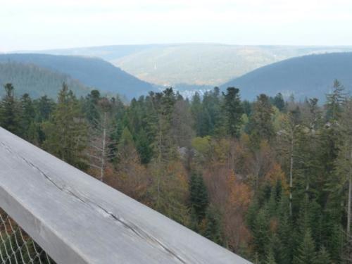 2019 Stutensee-Karlsdorf80